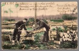 Chile Lumberjacks  Bûcherons Ca 1900 Original Postcard Cpa Ak (W4_196) - Beroepen