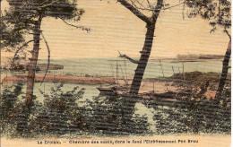 44 LE CROISIC / LA CHAMBRE DES VASES, Dans Le Fond Pen BRON (pas Brou) / CPA Couleurs TOILEE (Masson)NEUVE - Le Croisic