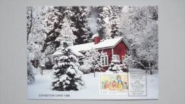 Finnland 1065 Yt 1029 Sc 782 Maximumkarte MK/CM AK, SST KOBENHAVN ´88, 40 Jahre Kindertagesgruppen - Finland