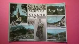 Saluti Da Cesana M. 1345 - Italie