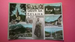 Saluti Da Cesana M. 1345 - Italy
