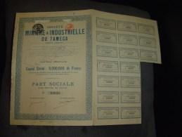 """Part Soc.""""Sté Minière Et Industrielle Du Tamega""""(Espagne)1923 Bon état,avec Tous Les Coupons.Mines - Russie"""