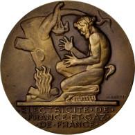 Electricité De France Et Gaz De France, Médaille - France