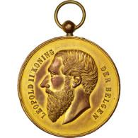 [#63539] Léopold II, Médaille - Royaux / De Noblesse