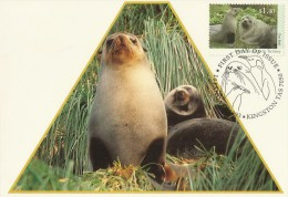 AAT 1993 Wildlife Fur Seals Maximum Card - Australian Antarctic Territory (AAT)