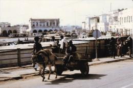 DJIBOUTI AFRIQUE TRANSPORT TRADITIONNEL ATTELAGE  JOUR DU MARCHE ETALAGE BARAQUES DE MARCHANDS EDIT. & PHOT. O. MARTINI - Djibouti
