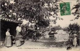 30 – ALAIS – L'Arrosage En Prairie – Un Puits à Roue - Alès