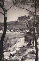 Espagne - Islas Baleares - Mallorca - Panorama Playa De Paguera - Mallorca