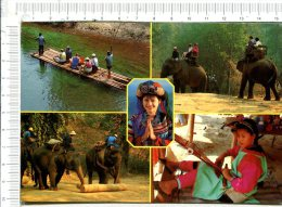 The Floating - Riding Elephant - Hilltribe Saying Good Morning  - The Working Elephant - Lisou Hilltribe Is Wipping - Tailandia