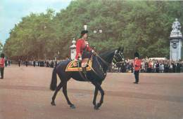CPM - Souvenir Of The Visit To L'armee Secret Louven 1979 - WINDSOR Grenadier - Guards Club - Windsor