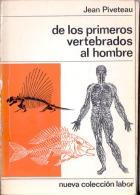 """""""DE LOS PRIMEROS VERTEBRADOS AL HOMBRE"""" DE JEAN PIVETEAU-TRAD.JUANA GOLPE-AÑO 1973 EDIT.NUEVA COLEC. LAB PAG. 165 GECKO. - Culture"""