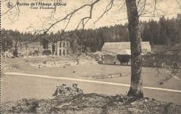 ORVAL : Ruines De L'Abbaye - Cour D'Honneur - CPA PEU COURANTE - Florenville