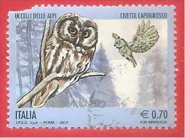 ITALIA REPUBBLICA USATO - 2013 - Uccelli Delle Alpi - Civetta Capogrosso - € 0,70 - S. ---- - 2011-...: Afgestempeld