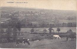 Ferrières - Panorama Du Moupet (vaches) - Ferrieres