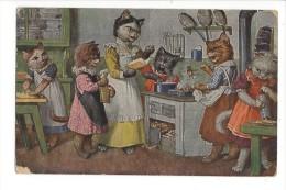 9717 -  Chats  Leçon De Cuisine - Thiele, Arthur