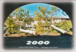 M J C – Télécarte ° LISLE/Tarn °=° N° 16F ° 12ème RDV Novembre 2000 ° Abattage Platanes Place Saissac ° 500 Exemplaires - Autres