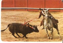 CALENDARIO DEL AÑO 1982 DE UN TORERO  (TORO-BULL) (CALENDRIER-CALENDAR) - Calendarios