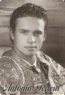 CALENDARIO DE ESPAÑA DEL AÑO 1996 DEL TORERO ANTONIO FERRERA  (TORO-BULL) (CALENDRIER-CALENDAR) - Calendarios