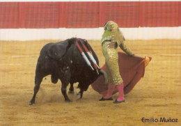 CALENDARIO DE ESPAÑA DEL AÑO 2003 DEL TORERO EMILIO MUÑOZ  (TORO-BULL) (CALENDRIER-CALENDAR) - Calendarios