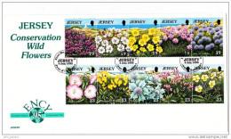 [A] FDC Enveloppe 1er Jour Jersey Fleur Flower Oblitération Spéciale Special Cancellation Ency 95 - Jersey
