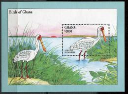 Ghana ** Bloc N° 249 - Oiseaux D'Afrique : Spatule (I) - Ghana (1957-...)