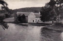 Daverdisse-sur-Lesse 10: La Ferme De Mohimont - Daverdisse