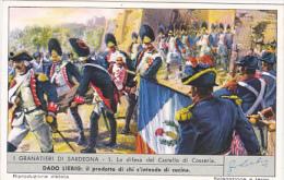 Liebei S1713 Sardinian Grenadiers No 1 La difesa del Castello di