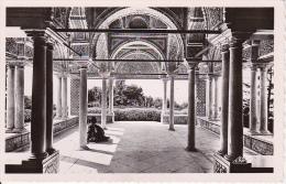 CPA Tunis - Le Belvédère - La Kouba - 1953 (6327) - Tunesien