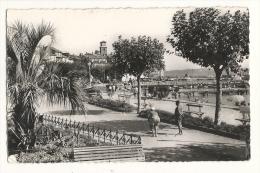 Cp, 83, Sainte-Maxime-sur-Mer, La Promenade, Voyagée 1955 - Sainte-Maxime