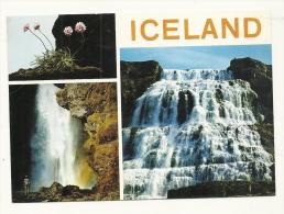 Cp, Isande, Multi-Vues - Islande