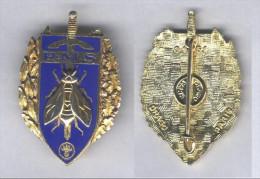Insigne Du Brevet De Préparation Militaire Supérieur - Esercito