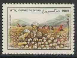 Afghanistan 1989 Mi 1641 ** Picking Cotton – Farmer's Day / Baumwollernte - Tag Der Landwirtschaft / Katoen - Landbouw