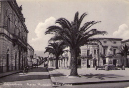 LINGUAGLOSSA - Catania