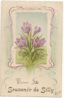 Illustrateur. Fleurs. Souvenir De Silly. Art Nouveau. - Silly