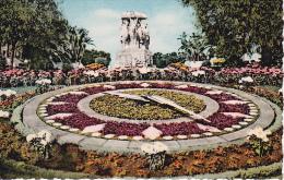CPSM Alger - Le Monument Aux Morts Par Landowski Et L'Horloge Florale - 1960 (6409) - Algerien