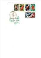 Enveloppe 1er Jour D´émission Coquillages Et Pêcheur De Trocas 1962 - Wallis Und Futuna