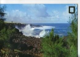 CP97209 - ÎLE De La REUNION - Paysage De La Côte Ouest - La Réunion