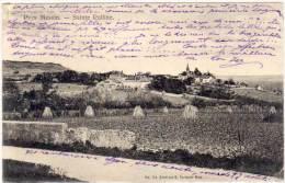 SAINTE RUFFINE - Pays Messin    (69906) - France