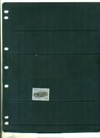 ALGERIE STADE OLYMPIQUE DE CHERAGA 1 VAL NEUF - Algeria (1962-...)