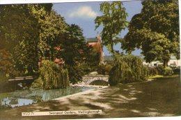 SWANSPOOL GARDENS - WELLINGBOROUGH - NORTHAMPTONSHIRE - COLOURED POSTCARD - Northamptonshire