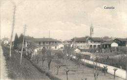 CAVARIA (VA) - PANORAMA - F/P - V: 1916 - Varese