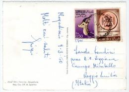 SOMALIA AFIS - MOGADISCIO SAMBUCHI IN PORTO -1960 - Somalia