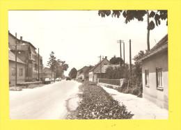 Postcard - Croatia, Velika Gorica       (V 22628) - Croatia