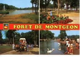 Le Havre : Forêt De Montgeon (roulotte Chevaux) Multivues N°57624/658 Mage - Le Havre