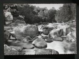 Ref2912 B1325 Carte Photo De Nedde - Un Coin Pittoresque N°401 Rivière - Torrent Montagne - Combier Imp. CIM 1966 - France