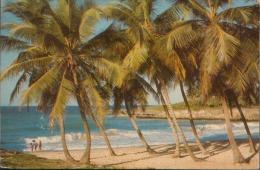 REPUBBLICA DOMINICANA VG. 1988 - Dominican Republic