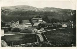 CHASSELAS - Le Château Belle Vue Avec Les Vignes Et La Montagne - Otros Municipios