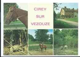 CIREY SUR VEZOUZE (M.et.M 54) Ecole D'équitation - Multivues Cavalière Cheval Sanglier (animée Voir Détails 2scan) MW877 - Cirey Sur Vezouze