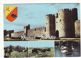 Cpm Cpsm Aigues Mortes - Frankreich