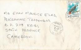 Cameroon Cameroun 1996 Buea Grey Parrot Bird Domestic Cover Correct Rate - Kameroen (1960-...)